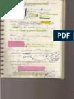 Psychic Investigator Journal Notes - Lisa Stebic 11.09.08 6pgs