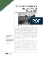 Costos y Beneficios del cuidado de la frambuesa.pdf