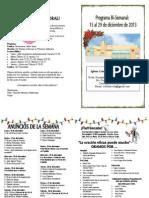 Boletín informativo del 15 al 29 de diciembre de 2013