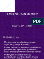 Pembentukan Membra-2007