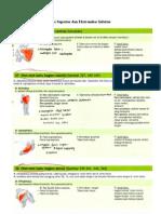 Resume 13-A3 2009