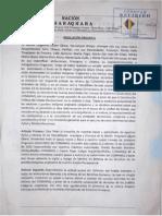 Resolucion Qhara Qhara APOYO CONAMAQ.pdf