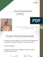 TVSO.pptx