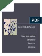 Bacteriologia_3
