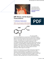 DMT, Moses, And the Quest for Transcendence