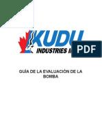 Pump Evaluation Guide SPA Web