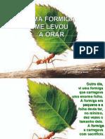 do a Orar Com as Formigas