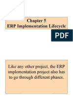 Chapter 5_ERP Implementation Lifecycle 08