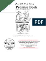 fwdl-promisebook
