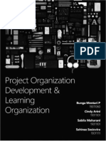 Project Organization Development & Learning Organization - Paper