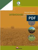 resumen_ejecutivo_intenciones_siembra2013-2014-220813.pdf