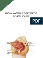 Macam-macam Infeksi Traktus Genital Wanita