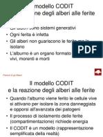 codit2013