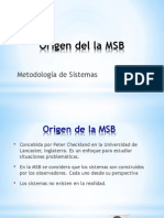Clase 8-Origen Del La MSB