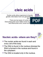 Nucleic Acids - A Basic Overview