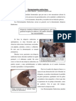 Dermatopatías-endocrinas