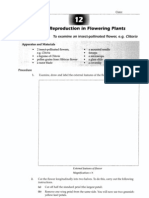 Sexual Reproduction_Flowering Plants
