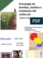 1-Semillas-siembra-e-instalación-del-cultivo-de-Chía.-Prof.Dr_.Líder-Ayala-Aguilera