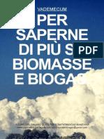 Vademecum 10 20131(Biogas)