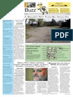 Boulder Buzz Newspaper Final