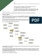 Agile_model.pdf