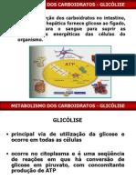 5ª Aula- Glicolise