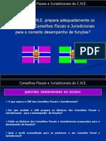 Conselhos Fiscais e Jurisdicionais do Corpo Nacional de Escutas - Necessidades de Formação.