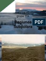 Regiunea subpolara