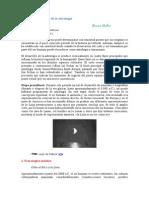 (Artigo) Bruno Huber - Historia y desarrollo de la astrología