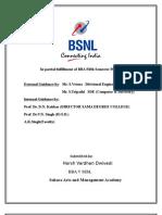 Bsnl Summer training Project