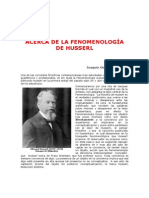 Acerca de la fenomenología de husserl