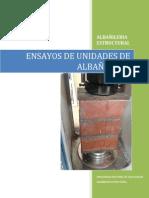 Informe Unidades Alba 2012