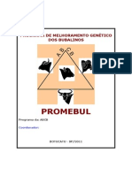 #1_Promebul.pdf