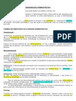 Administrativo - 3 - Organização administrativa