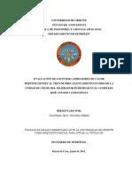 53-TESIS.IP011.N50