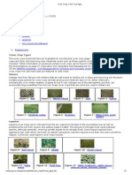 Cover Crops_ Cover Crop Types
