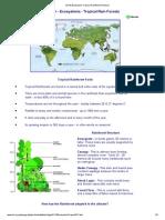 GCSE Ecosystem Tropical Rainforest Revision