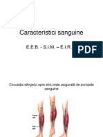 Caracteristici Sanguine
