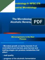 Alcoholic Beverages IV