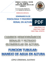 Renal en Altura 2013 Grupo a (1)