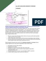 Mekanisme Kerja Dan Metabolisme Hormon Steroid