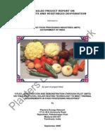 DPR on Solar Vegetables Processing
