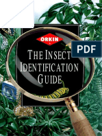 Insects Identification Guide