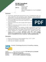 Sap pm resume india term paper prospectus example