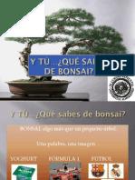 curso_bonsais2010