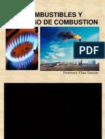 Combustibles y procesos de combustión 2013-1
