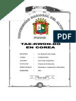 Trabajo de Taekwondo