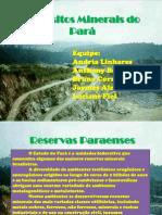 Depósitos Minerais do Pará.