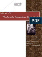 Informe PERFO 2