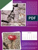 Xerophilia 2014  Calendar - 1
